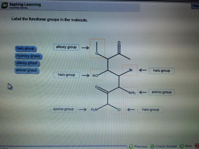 Math study links