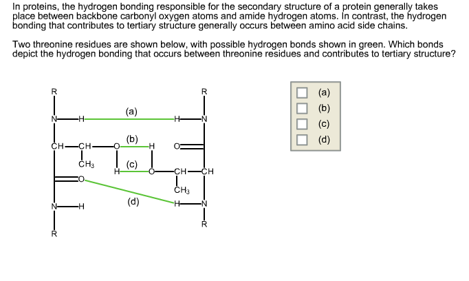 solved in proteins the hydrogen bonding responsible for