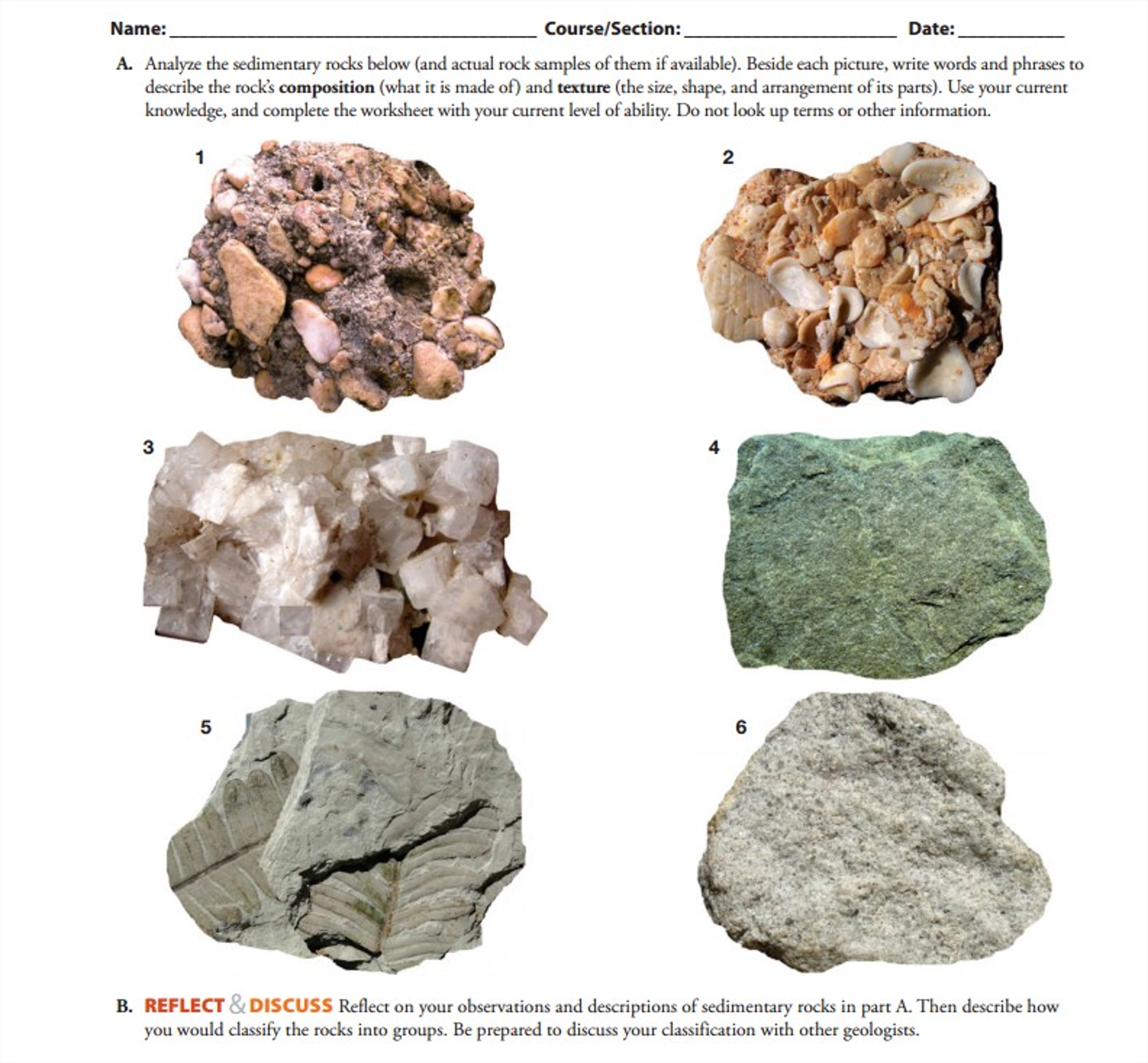 Analyze The Sedimentary Rocks Below and Actual Ro – Classifying Rocks Worksheet