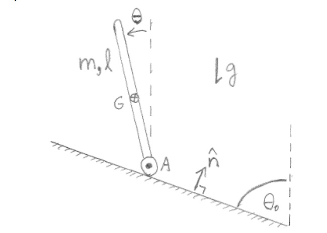 A uniform rod of length l and mass m is released f