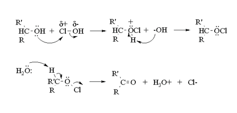 oxidation of borneol to camphor This experiment focuses on the synthesis of (-)-camphor from (-)-borneol via  oxidation this was done by using clo- as the oxidizing agent.