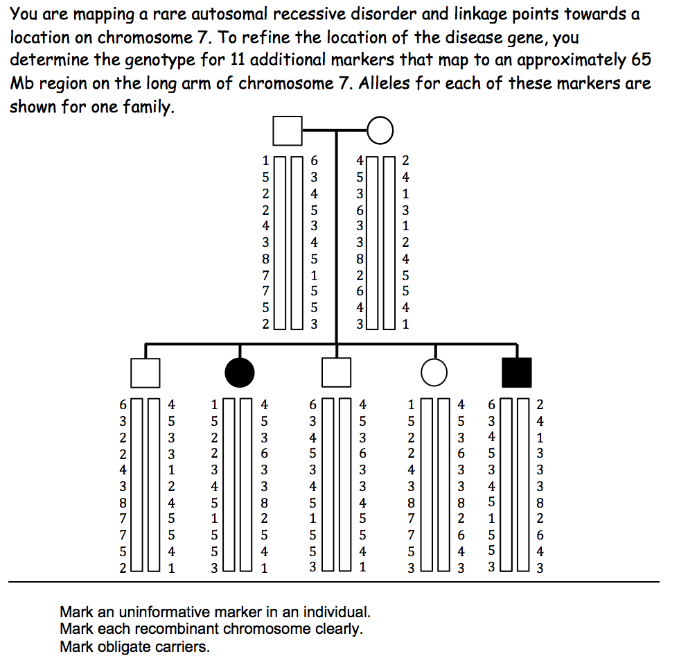a rare autosomal recessive disease biology essay Read this essay on tay-sachs disease  jacob ms biology 2 18 feb 2015 tay-sachs  tay–sachs disease is a rare autosomal recessive.