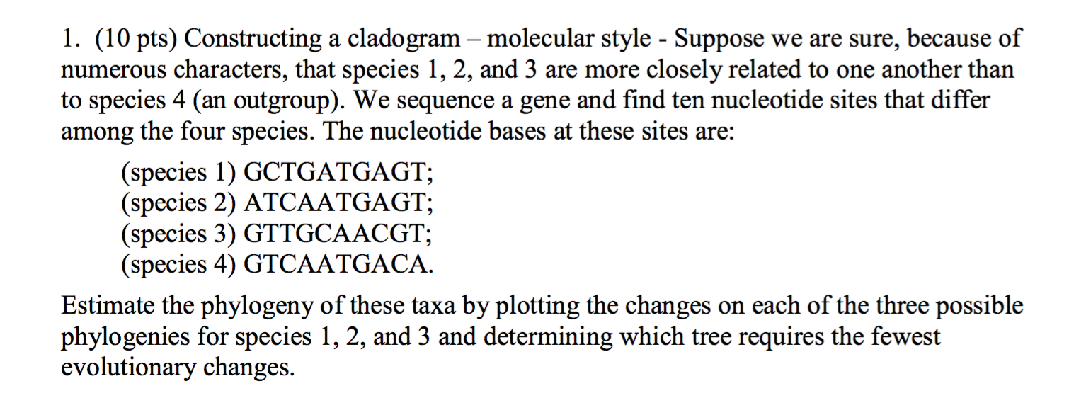 Cladogram worksheet answer key worm spider and fly