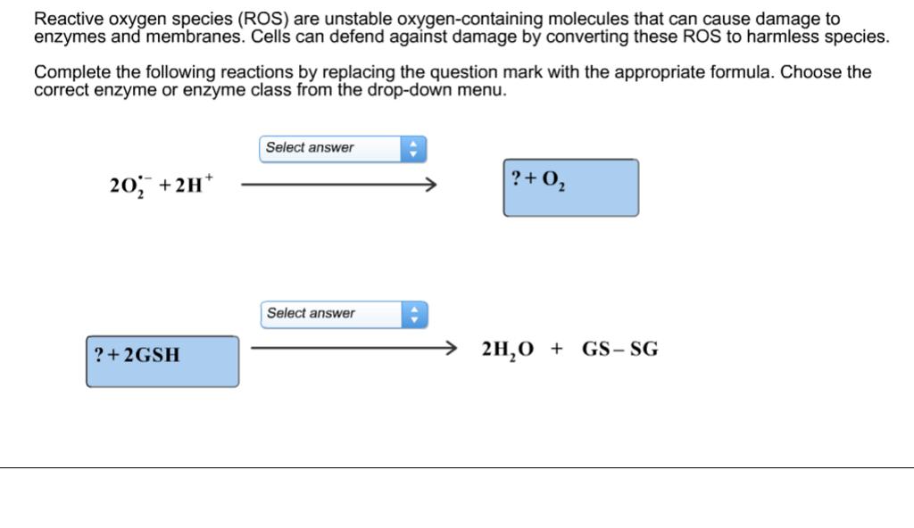 reactive oxygen species