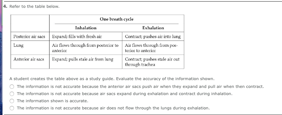 into thin air study guide questions answers
