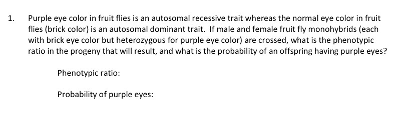 Purple eye color in fruit flies is an autosomal re