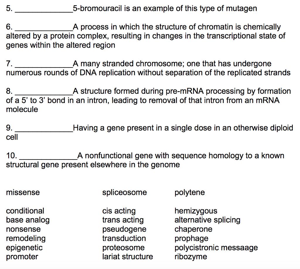 Workbooks glencoe biology workbook : Biology chapter 17 vocabulary and assessment   Coursework Help ...