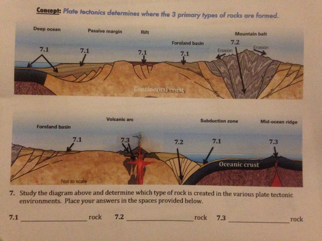 Concept plate tectonics determines where the 3 pr chegg concept plate tectonics determines where the 3 primary types of rocks are formed deep ocean pooptronica