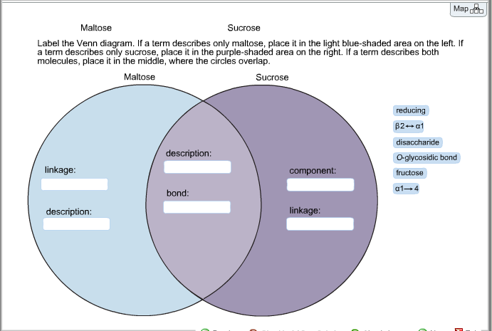 solved  maltose surcose label the venn diagram  if a term