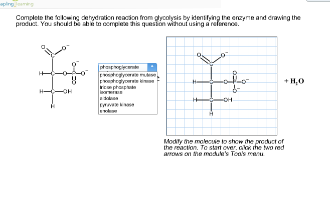 Solved complete the following dehydration reaction from g apling learning complete the following dehydration reaction from glycolysis by identifying the enzyme and drawing the publicscrutiny Gallery