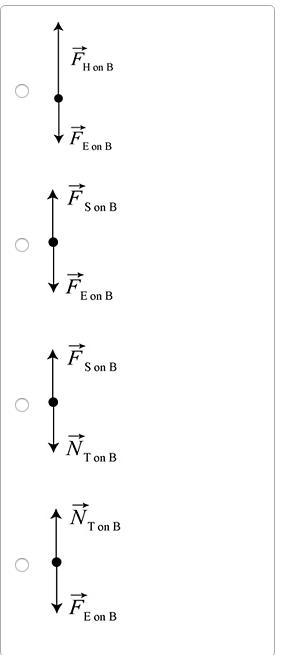 A)Choose The Correct Force Diagram For A Bag Hangi... | Chegg.com