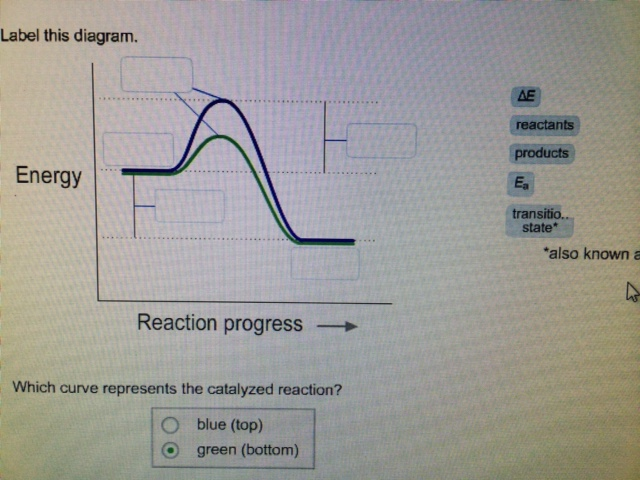 Label This Diagram Which Curve Represents The Cata... | Chegg.com