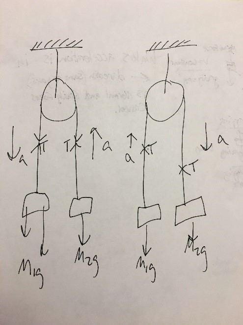 Solved draw a free body diagram for m1 and m2 in each pro use newtons second law to write an equation for each of the free body diagrams you drew in question 2 note be sure to use the correct signs to agree ccuart Choice Image