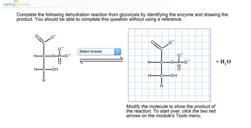 Solved complete the following dehydration reaction from g complete the following dehydration reaction from g publicscrutiny Gallery