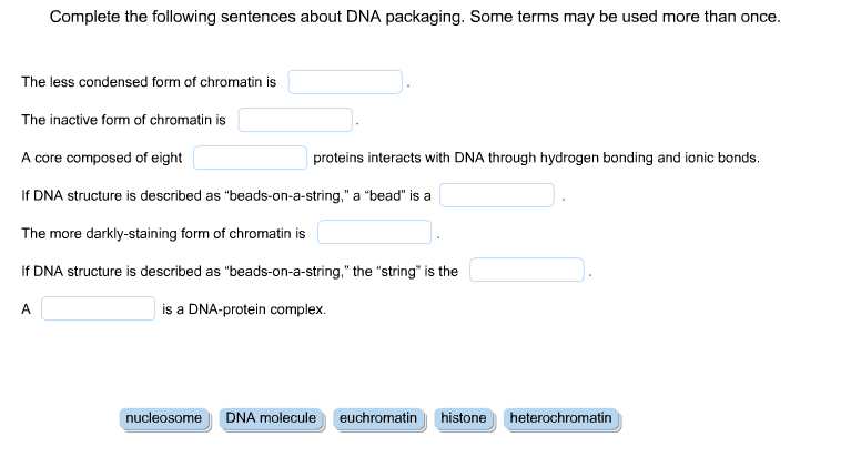 Show transcribed image text Complete the following sentences about DNA  packaging  Some terms may be used more than once  The less condensed form  of. Complete The Following Sentences About DNA Packagi      Chegg com