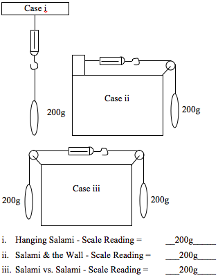 A. Below is a figure showing the three basics sala