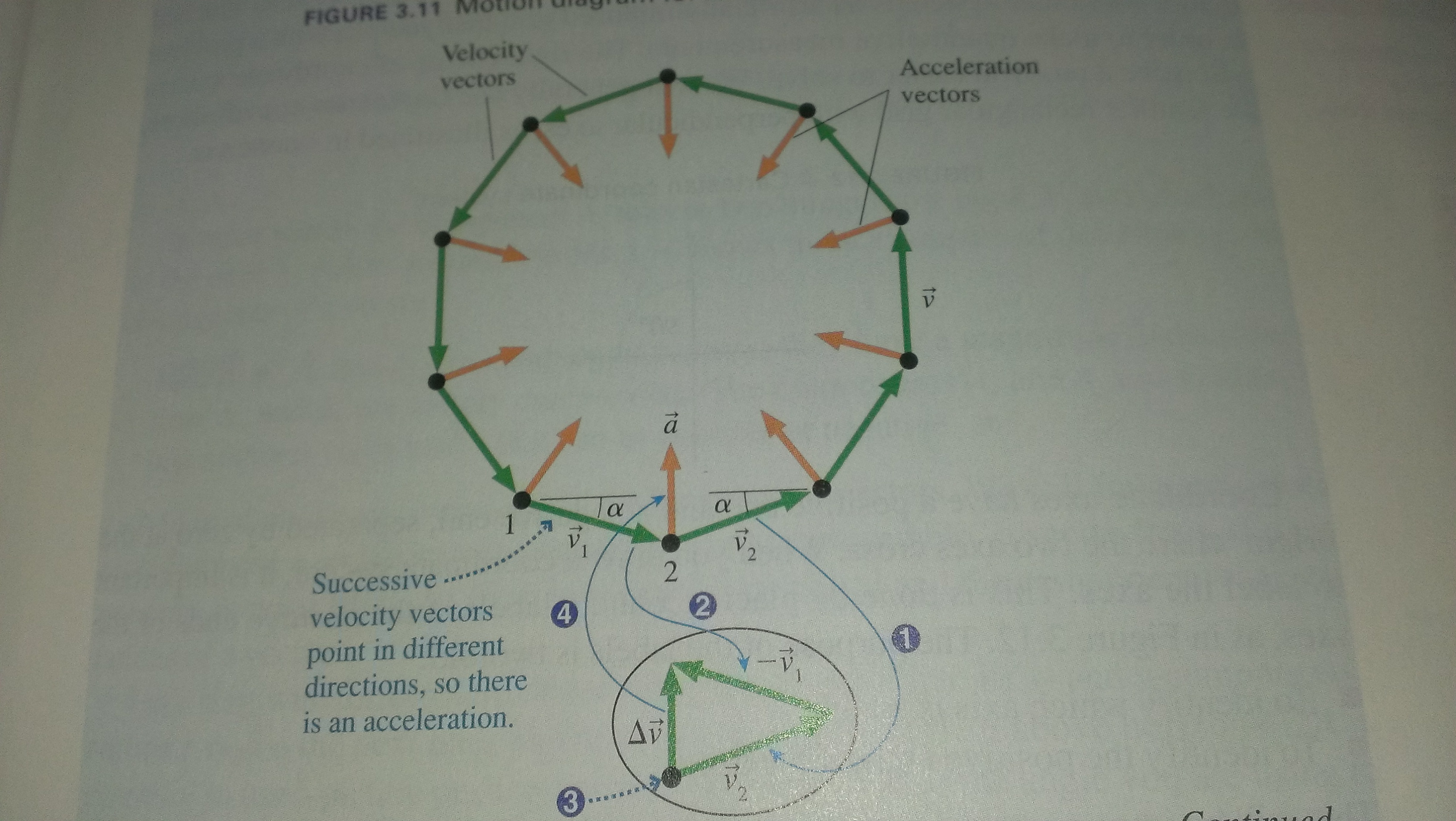 For the motion diagram of a Ferris wheel below, it