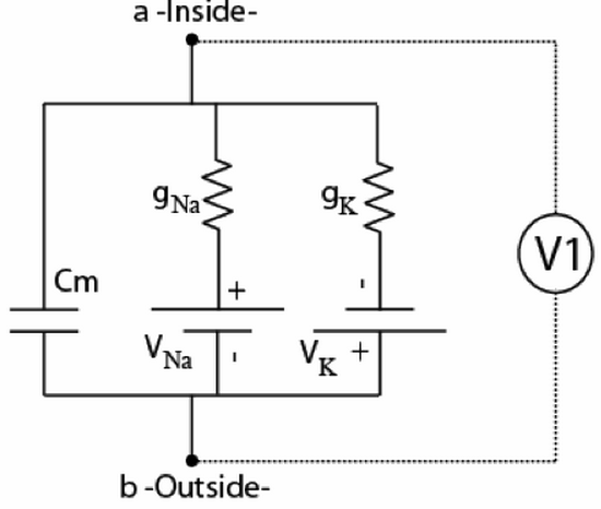 In the circuit below, both conductances are initia