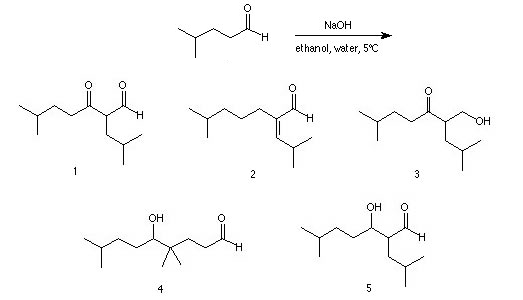 identify the product of the reaction shown below.