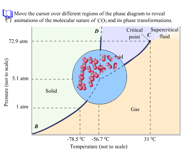 Open The Phase Diagram For Co2 Given In The Introd