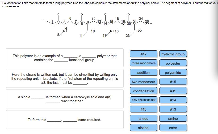 Polymerization Links Monomers To Form A Long Polym... | Chegg.com