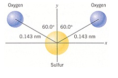 sulfur atom