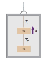 Two blocks, each of mass m = 3.95 kg are hung from