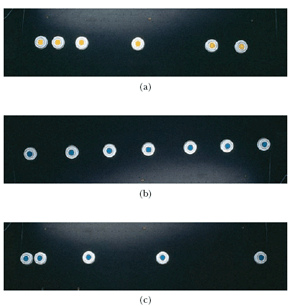 Each of the strobe photographs (a), (b), and (c) i