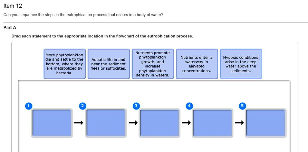 eutrophication process flow chart wwwpixsharkcom