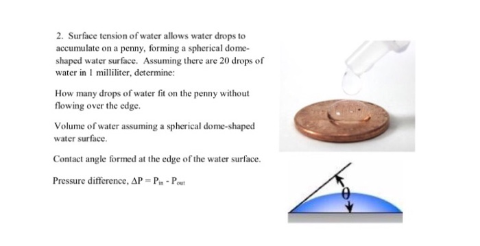 Cohesion, Adhesion, and Surface Tension