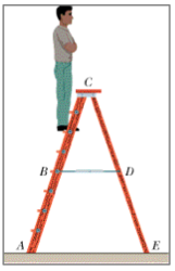 For the stepladder shown in the figure, sides AC a