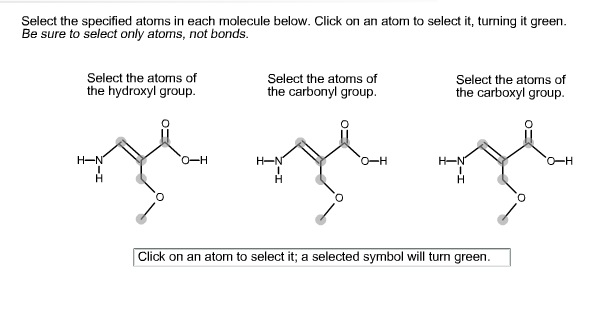 Select the specified atoms in each molecule below.