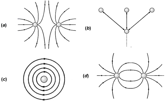 solved  1  the electric field lines around an electrical d