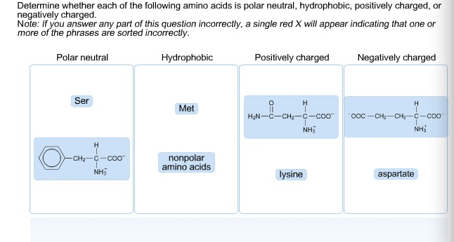 Determine whether each of the following amino acid