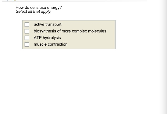 How do cells use energy? Select all that apply. a