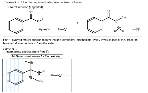 Examination of the Fischer esterifcation mechanism