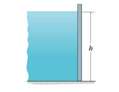 Determine the magnitude of the hydrostatic force a