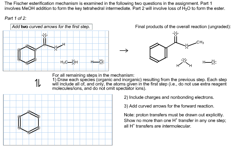 The Fischer esterification mechanism is examined i