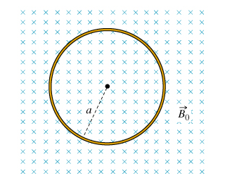 A loop of wire of radius a = 35 has an electrical