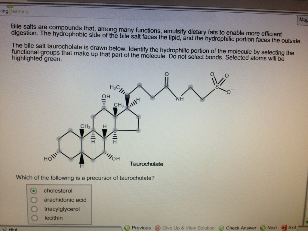 Homework help chemical bonding