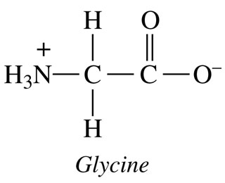 Glycine amino acids