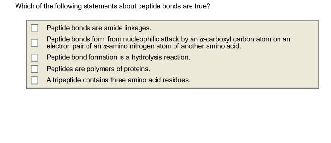 Which of the following statements about peptide bo
