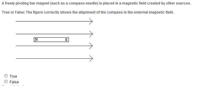 A freely pivoting bar magnet (such as a compass ne