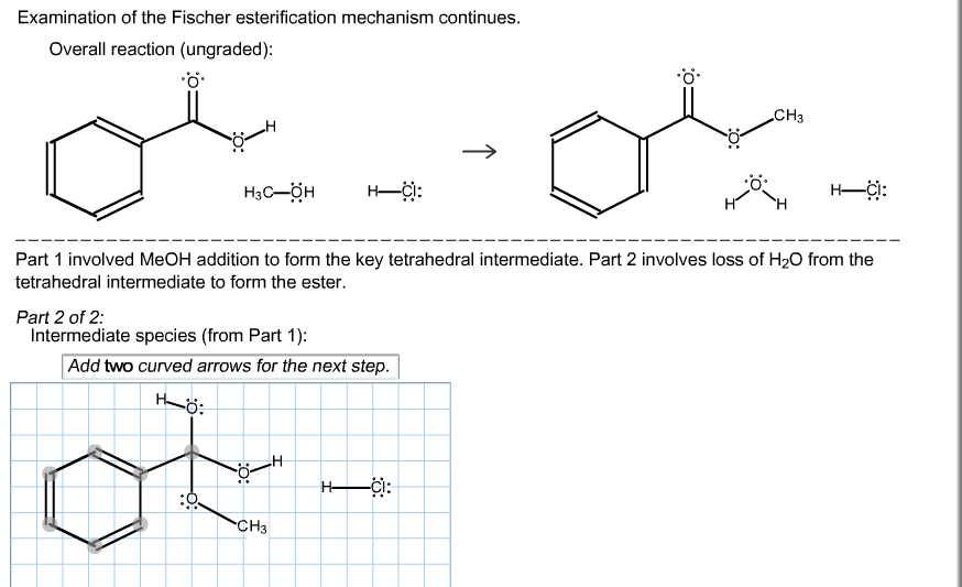 Examination of the Fischer esterification mechanis