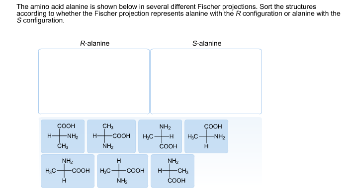 assign r and s to fischer projection