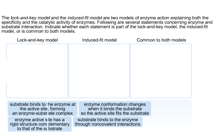The lock-and-key model and the induced-fit model a