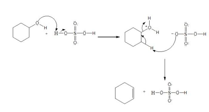 Cyclohexene   H2so4