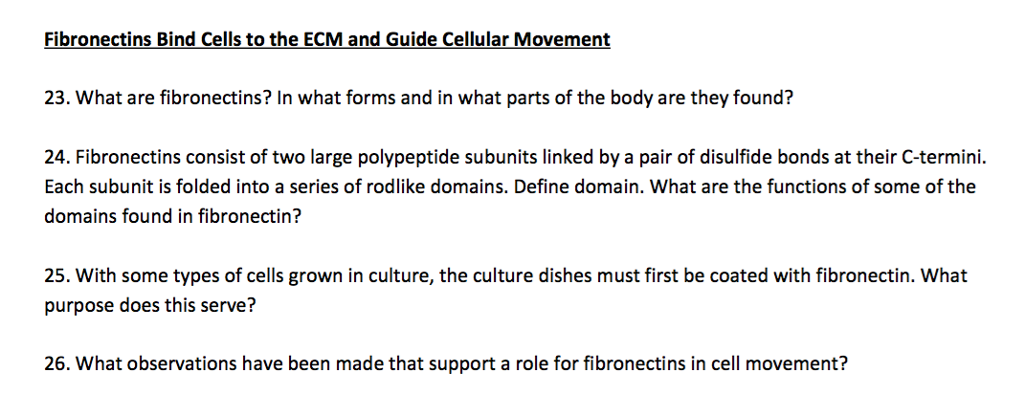 cellular movement essay The cytoskeleton and cell movement - image diversity: the cytoskeleton more bite-sized q&as below 2 what substances are microtubules made of what structures and cellular processes are microtubules involved in microtubules are made of consecutive.