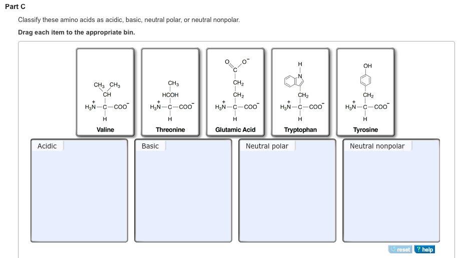 Part A Classify These Amino Acids As Acidic Basic