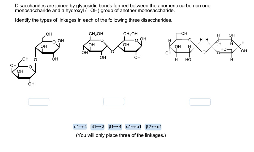 Chemistry archive october 06 2015 chegg disaccharides are joined by glycosidic bonds forme ccuart Choice Image